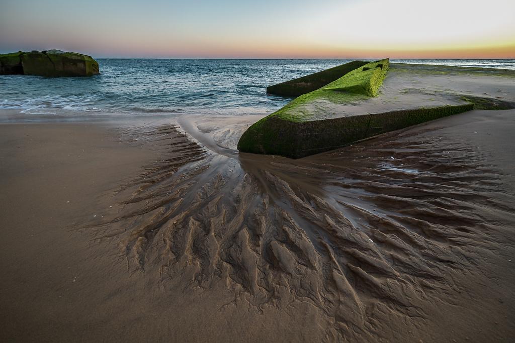 Tide Artwork